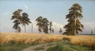 """les champs de seigle peints par le méticuleux auteur des fameux """"oursons"""", Ivan Chichkine (1832-1898). Ici aussi, on retrouve magnifiquement l'essence du paysage russe. Peut-être est-ce parce qu'il aura passé toute son enfance dans les régions sauvages de l'Oural et de la Volga ?"""