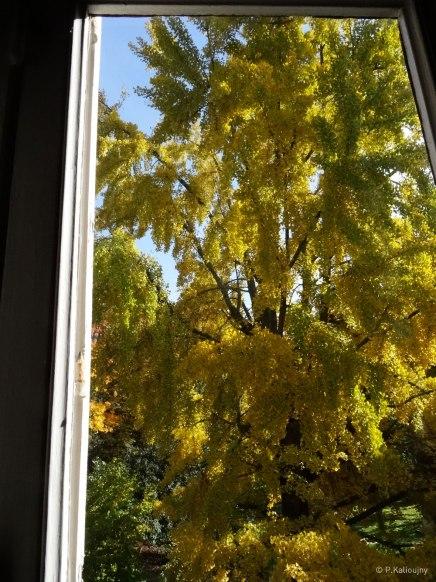 Vue de la fenêtre de l'atelier de Troyes.