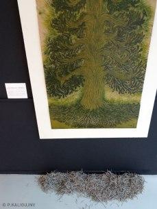 """""""Le Pin de Barenton"""". Linogravure. Exposition """"Esprits des bois"""" © P.KALIOUJNY - 2016"""
