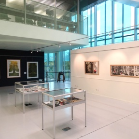 """Vue de l'exposition """"Esprits des bois"""" - Médiathèque du Grand Troyes 2016. © P.KALIOUJNY"""