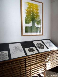 Exposition d'un tirage du Pin de Barenton, et dessins préparatoires à l'encre - Festival de Moulins, sept.-oct. 2017.