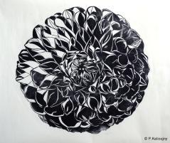 Le grand Dahlia noir. Estampe sur papier thaïlandais. Environ 1m x 1m.